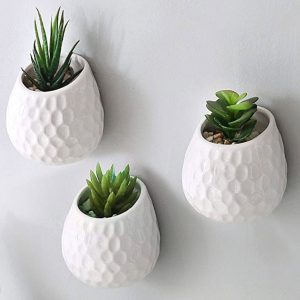Architectural Wall Planter