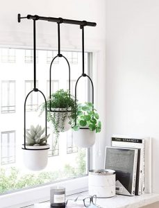 Hanging Plant System