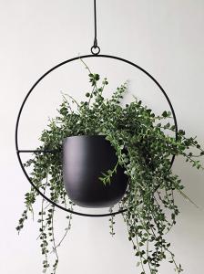 Minimalist Hanging Planter